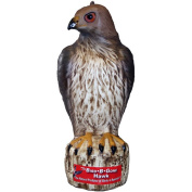 Bird B Gone Inc. BBGMMRTH1 Bird-B-Gone Hawk
