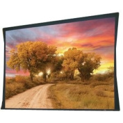 Draper 102300 Access/Series V Motorised Front Projection Screen - 58 x 104''