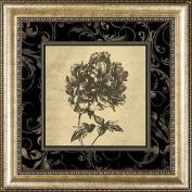 Sepia Floral I, Framed Art
