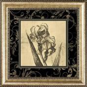 Sepia Floral II, Framed Art