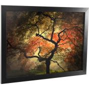 """Trademark Fine Art """"Japanese"""" Framed Canvas Art, 46cm x 60cm"""