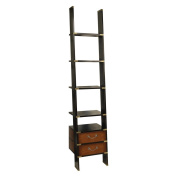 Authentic Models 29.26m Wooden Library Ladder