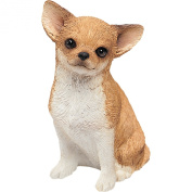 Sandicast Mid Size Chihuahua Sculpture in Fawn