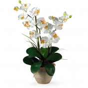 Nearly Natural 1026-CR Double Stem Phalaenopsis Silk Orchid Arrangement