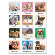 Recycled Puppies Desk Pad, 22 x 17, 2014