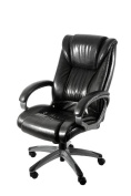 Z-Line Designs Designs Black Executive Chair with Graphite Finished Base