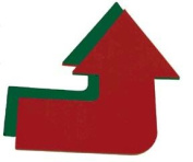 Olympia Sports GE489P Jumbo Curved Poly Arrow - red-green