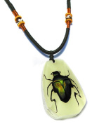 Ed Speldy East PYB1103 Real Bug Necklace-Green Chafer