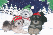 Pipsqueak Productions C503 Holiday Boxed Cards- Havanese