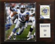 C & I Collectables 1215SUH NFL Detroit Lions Player Plaque