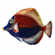 Next Innovations WA3DMANGELFISHMULTI CB Angelfish Refraxions 3D Wall Art, Multi