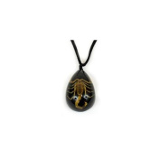Ed Speldy East NEK213 Leather Necklace - Gold Scopion with Black Background
