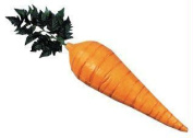 Costumes For All Occasions Mp12 Carrot 21 Inch Foam Filled