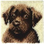 Wonderart Latch Hook Rug Kit, 30.5cm x 30.5cm Chocolate Dog