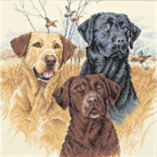 "Dimensions ""Great Hunting Dogs"" Counted Cross Stitch Kit, 30cm x 30cm"