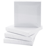 Mini Canvases in Poly Bag (4-Pack)