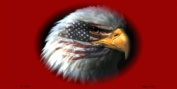 LP-1318 American Flag with Eagle on Dark Red Background Licence Plates Tags