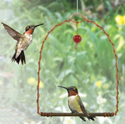 Songbird Essentials SEHHHUMS Copper Hummingbird Swing