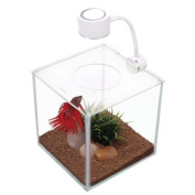 RC Hagen 13485 Marina CUBUS Glass Betta Kit