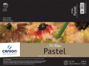 Mi-Teintes Pastel Pad, Earth Tones, 30cm x 41cm Fold Over