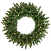 Vickerman A861031 30 Camdon Wreath 170T 100CL Indoor-Outdoor