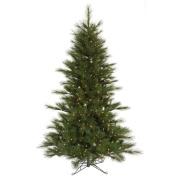 Scotch Pine Full Pre-lit Christmas Tree