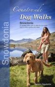 Countryside Dog Walks - Snowdonia