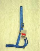 Hamilton Halter Company - Bull Turn Out Halter- Blue 1 Inch - 30DB BL