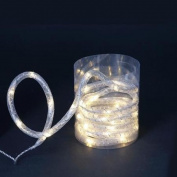 3m LED Warm White Christmas Rope Light with Silver Mesh Lining