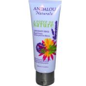 Andalou Naturals Hand Cream Lavender Shea - 100ml - pack of 3