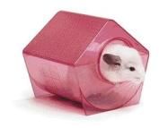 Super Pet - Chinchilla Bath House- Assorted - 100079170