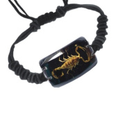 Ed Speldy East SL153 Real Bug Bracelet-Scorpion-Rectangle Shape-Black