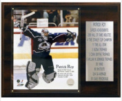 C & I Collectables 1215ROYCOLST NHL Patrick Roy Colorado Avalanche Career Stat Plaque
