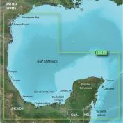 Garmin BlueChart® g2 Vision® - VUS032R - Southern Gulf of Mexico - microSD & #153;/SD & #153;