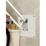 HealthCraft Products PT-WP-WD Wall Mount Plate for PT Rail- Wood