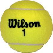 Olympia Sports BA457P Wilson Championship Game Tennis Balls