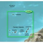 Garmin 010-C0750-20 Bluechart G2 - HXAF450S - Madeira & Canary Islands - Micro SD & SD