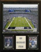 C & I Collectables 1215MEDST NFL Meadowlands Stadium Plaque