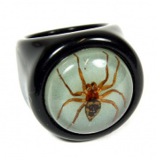 Ed Speldy East R0018-6 Spider Black Ring with Glow in Dark Back - Size 6