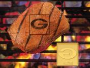 Fan Mats NFL Green Bay Packers Fan Brands