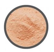 Sandtastik Plas5Lbbagorg Sandtastik Plastermix Plaster Casting Compound Orange - 2.3kg