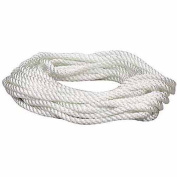 Lehigh Group .96.5cm . x 15.24m Twist Nylon Rope NPP850X