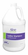 Durvet/Equine 077-00344 Aloe Iodine Shampoo 1 Gallon
