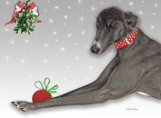 Pipsqueak Productions C556 Greyhound Holiday Boxed Cards