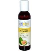 Aura Cacia 84996 Avocado Vegetable Massage Oil