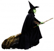 The Wizard of Oz - Wicked Witch Life-Size Cardboard Stand-Up