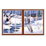 Beistle 207887 Winter Insta-View