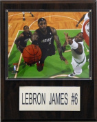 C and I Collectables 1215LEBRON NBA Lebron James Miami Heat Player Plaque
