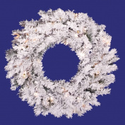 Vickerman A806324 24 Flocked Alaskan Pine Wreath 96 Tips