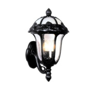 Rose Garden F-1717-BLK-SG Small Bottom Mount Light with Seedy Glass-Black